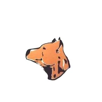 Cimarrones de Libertad - San José